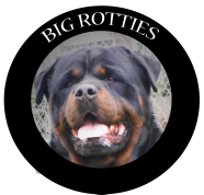 Big Rotties